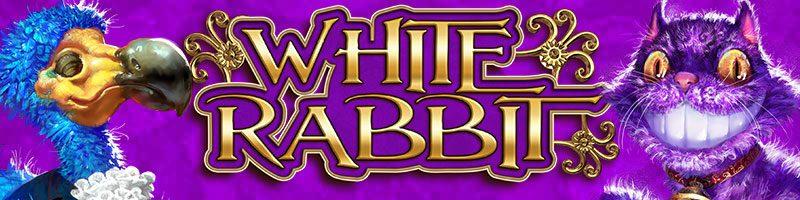 White rabbit banner hos spelacasino.com