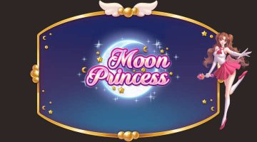 moon princess banner
