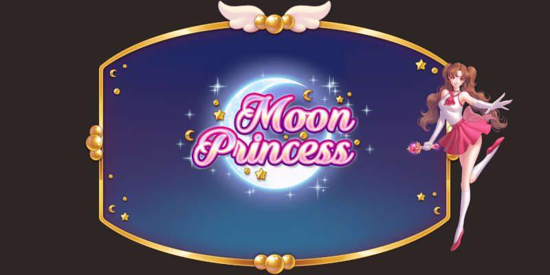 moon princess banner