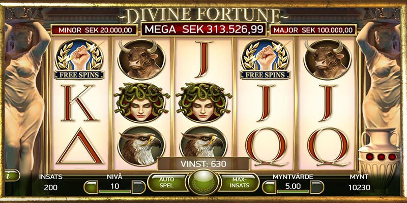 Spelupplägg Divine Fortune