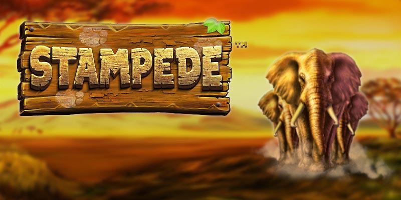 slot med galna elefanter hos www.spelacasino.com